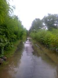 banjir di kapurinjing foto1608