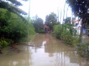 banjir di kapurinjing foto1610