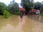 banjir di kapurinjing